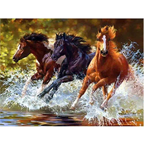 DIY Diamond Painting Kits for Adults, Kids,Room Decor House Office Presents for Her Him Three Horses 15.7x11.8in 1 Pack by Aimerson