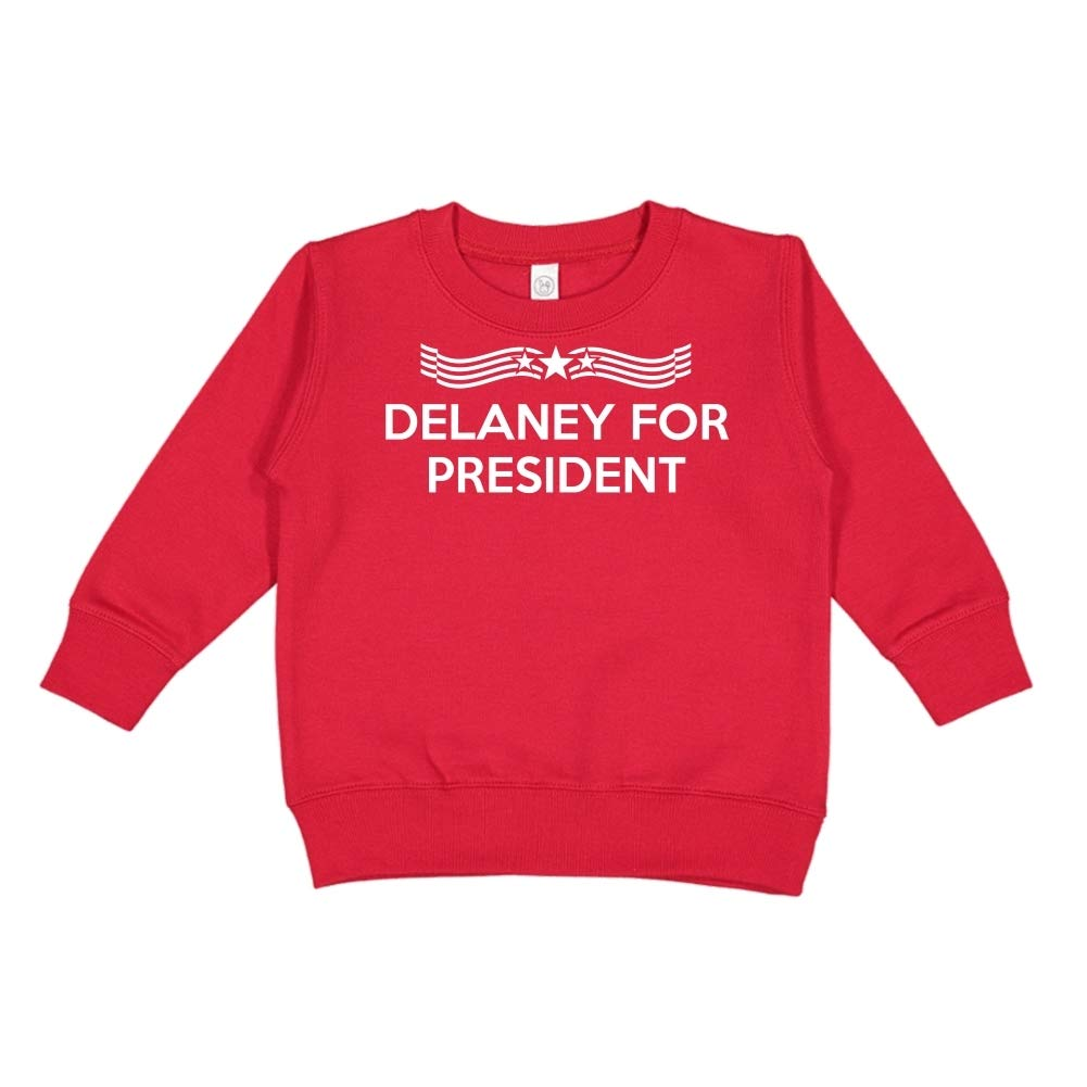 Star Banner Delaney for President Presidential Election 2020 Toddler//Kids Sweatshirt