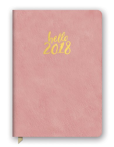 Orange Circle Studio 2018 Medium Leatheresque Weekly Agenda, Aug. 2017 - Dec. 2018, Hello Pink