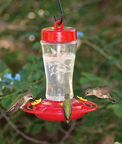 12 oz Hummingbird Feeder (Etched Hardened Glass) - 3910