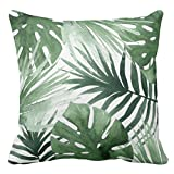 UOOPOO Tropics Outdoor Throw Pillow Case Square 24 x 24 inches Soft Cotton Canvas Home Decorative Wedding Cushion Cover for Sofa and Bed One Side