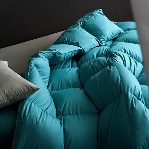 Buy colored down comforters