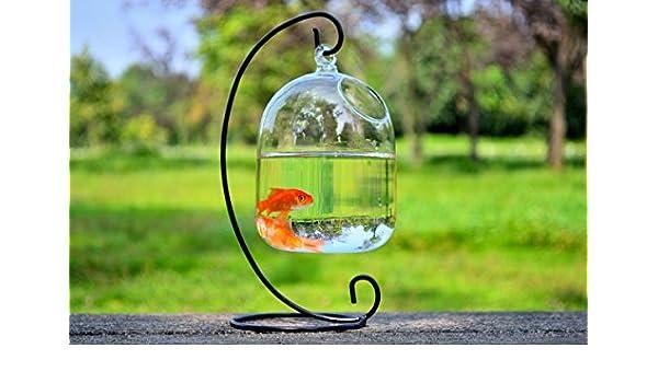 SHINA Hidropónico de colgar de la pared de la burbuja de pescados ...