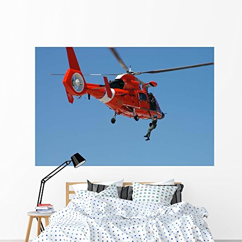Hh-65c Dolphin Demonstrates Helicopter Wall Mural by Wallmonkeys Peel and Stick Graphic (72 in W x 48 in H) WM105489