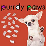 40-Pack Soft Nail Caps For Dogs Claws CLEAR JUMBO Purrdy Paws