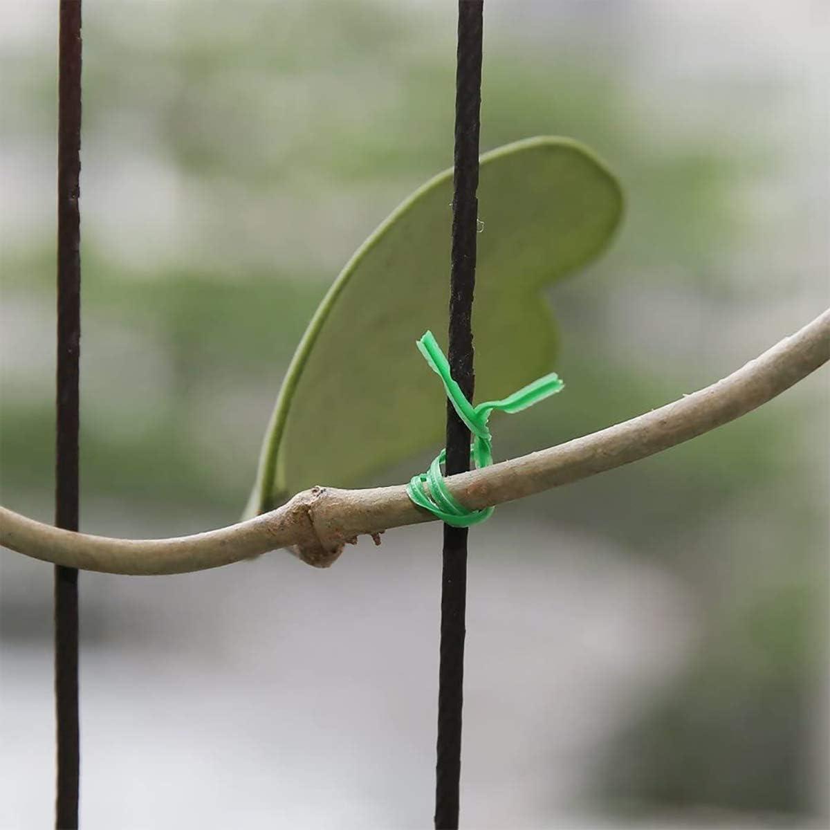Fascette da Giardinaggio Legami HNJKJEU 100 m Cravatta da Giardino Verde Cravatta vegetale Morbida per Supporto pianta Albero