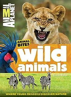 Wild Animals Animal Planet Bites