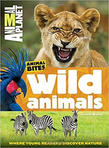 wild animals animal planet animal bites animal planet
