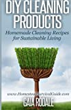 img - for DIY Cleaning Products: Homemade Cleaning Recipes for Sustainable Living (Sustainable Living & Homestead Survival Series) book / textbook / text book