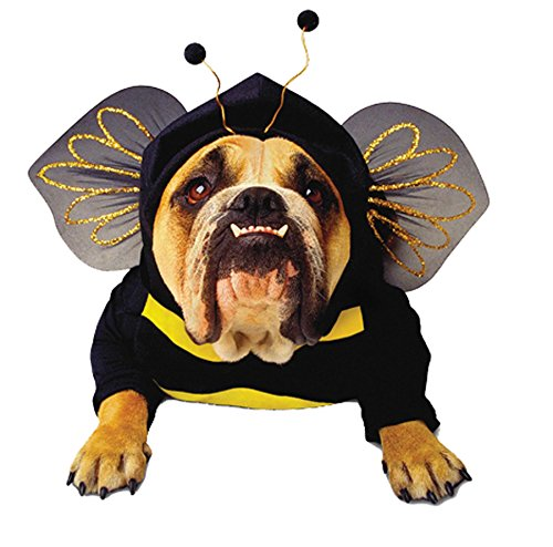 Costumes Bumblebee Dog (Bumblebee Dog Pet Pet Costume -)