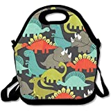 Cute Dinosaur Insulated Lunch Bag Reusable Lunch Tote Bags Lunchboxes Travel Picnic Lunch Bag Handbag