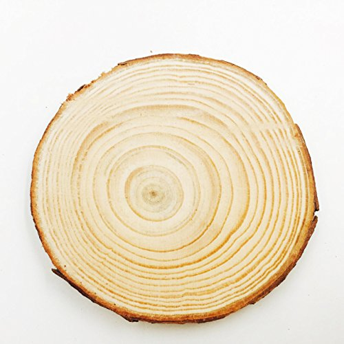 Wood Slices for Coasters,2.9-3.2 inch 20pcs by MAIYUAN
