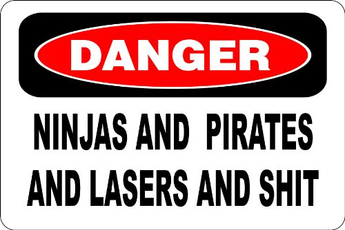 Danger Ninjas And Pirates And Shit 8