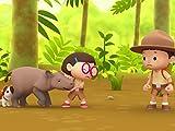 Sumatran Rhinocerous