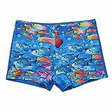 iiniim Boys Animal Sea-fish Swim Shorts Swimming Boxers Briefs Trunks Beach Swimwear 8-14 Years Pattern 2 10 Years