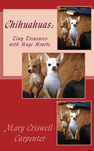 Chihuahua Heart - 5