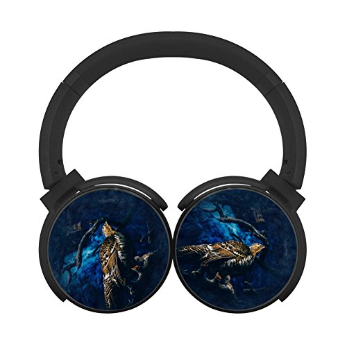 Gamer Chart Eagle Stereo Wireless Headphones With Microphone On-Ear Foldable Portable Music Headsets For Cellphones Laptop Tablet Tv Headphonesblack