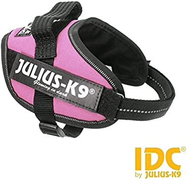 JULIUS-K9 - Arnés IDC PowerHarness, resistente pechera de color ...