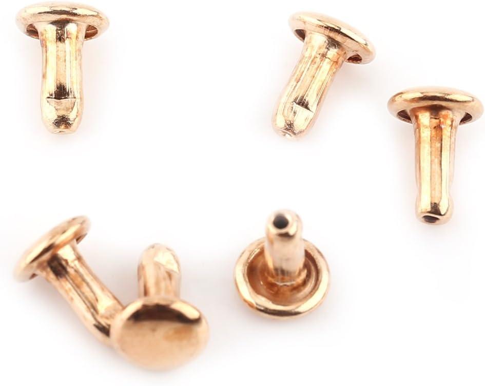 Handwerk Basteln Yosoo 100 St/ück Bulk Doppel-Nieten 6 x 8 mm f/ür Leder Reparatur von Schuhen und Halsb/ändern von Tieren Tasche