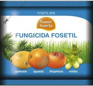 Fungicida sistemico Fungitil AL 50 Gr