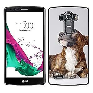 Cubierta protectora del caso de Shell Plástico || LG G4 || Americana Bullterrier perro del pitbull @XPTECH