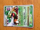 : Pokemon Promo Card Holofoil Torterra Level X DP09