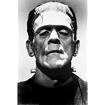 Frankenstein 1931 boris karloff 36x24 black for Black and white celebrity prints