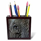 3dRose Danita Delimont - Elephants - Africa, Zambia. Close-up of elephants eye. - 5 inch tile pen holder (ph_256992_1)