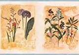 Wallpaper Border Bright Wildflowers Floral Squares
