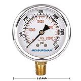 """MEASUREMAN 2-1/2"""" dial, 1/4""""NPT Lower, Glycerin"""
