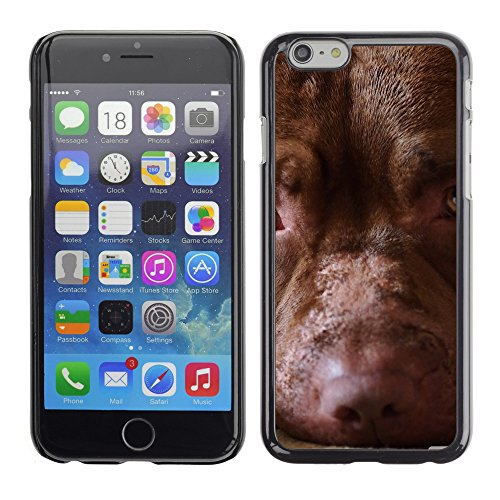 "Premio Sottile Slim Cassa Custodia Case Cover Shell // V00003246 tristesse chien // Apple iPhone 6 6S 6G 4.7"""