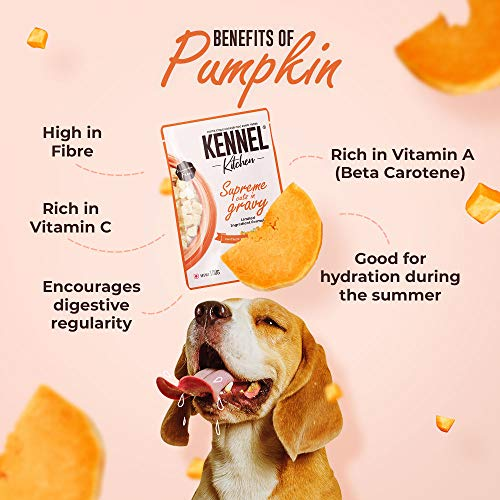 Kennel Kitchen Supreme Cuts in Gravy, Chicken Recipe with Pumpkin, Wet Dog Food for Adult and Puppy, 100g (Pack of 12)