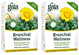 Gaia Herbs Bronchial Wellness Herbal Tea, 16 Tea Bags (Pack of 2) – Soothing Support, Promotes Respiratory Health, Caffeine Free