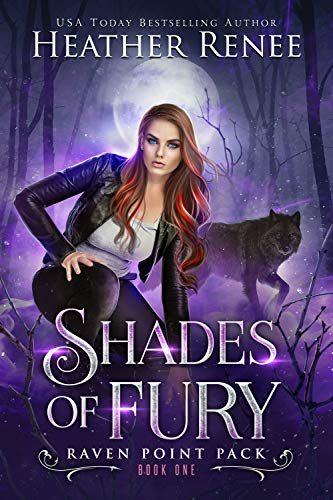 Shades Of Fury by Heather Renee ebook deal