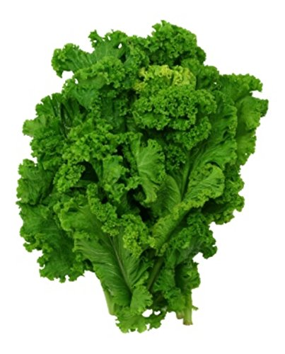 500 Organic Southern Giant Curled Mustard Greens Seeds ~ Zesty Vegetable ()