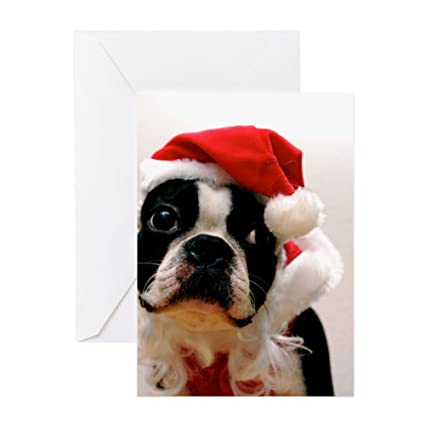 Amazon Cafepress Boston Terrier Santa Claus Greeting Card