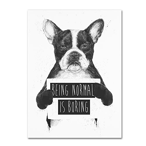 Being Normal Is Boring by Balazs Solti, 35x47-Inch Canvas Wall Art from Trademark Fine Art