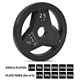 """Day 1 Fitness Cast Iron Olympic 2-Inch Grip Plate for Barbell, 25 Pound Single Plate Iron Grip Plates for Weightlifting, Crossfit - 2"""" Weight Plate for Bodybuilding"""