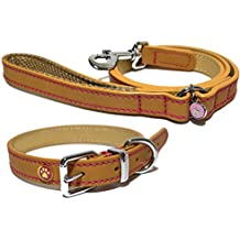 Rosewood Wag N Walk Designer Leather Harness (Toy Dog/Puppy)