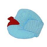 Kuber Industries Mustard Seeds (Rai) Pillow - Apple Shape (Cotton),Sky Blue -