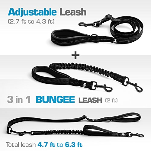 SparklyPets-Heavy-Duty-Rope-Leash-for-Large-and-Medium-Dogs-with-Anti-Pull-Bungee-for-Shock-Absorption-No-Slip-Reflective-Leash-for-Outside