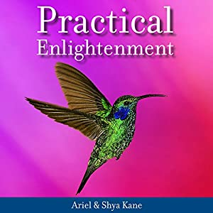 Practical Enlightenment Hörbuch