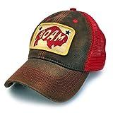 Everyday Trucker Hat Roaming Buffalo, Brown