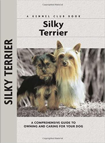 Silky Terrier A Comprehensive Guide To Owning And Caring For Your