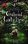 Les incroyables et périlleuses aventures de Gabriel Latulipe, tome 1 : L'alchimiste du mal par Faucon