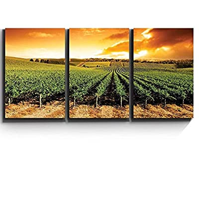 Print Contemporary Art Wall Decor Gorgeous Sunset Over Vineyard Artwork Wood Stretcher Bars x3 Panels, That You Will Love, Handsome Technique