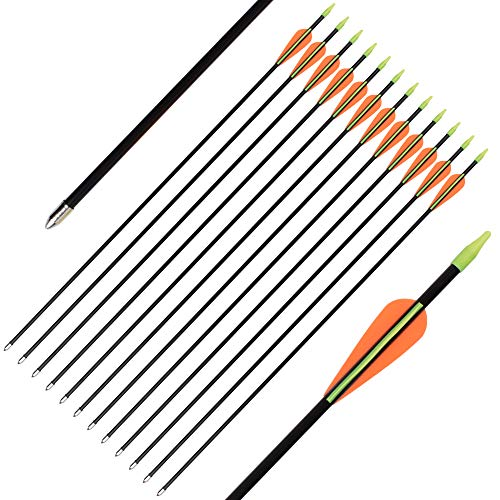 SHENG-RUI 24 Inch Fiberglass Archery Target Arrows - Practice Arrows or Youth Arrows for Recurve Bow 12 Pack