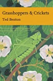 Ted Benton Biological Science of Insects & Spiders