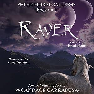 Raver Audiobook