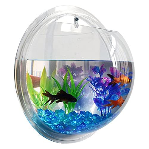 Cool Fish Tanks Amazon Com